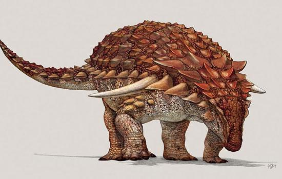 کشف گونه ای جدید از دایناسور که 5 متر طول دارد