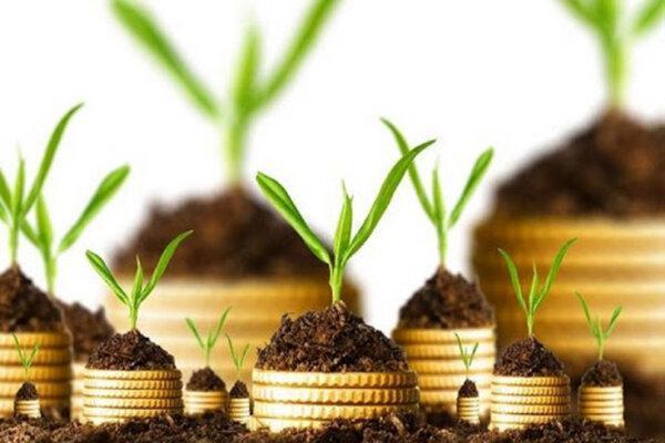 باغداران برای خرید پوشش بیمه ای اقدام نمایند