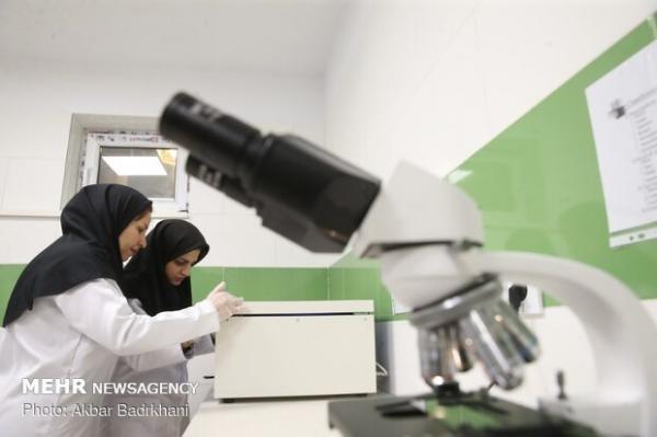 رساله های دکتری حوزه زیست فناوری علوم پزشکی اصفهان حمایت می شوند