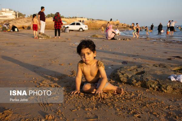 (تصاویر) سواحل بوشهر در این روز های کرونایی